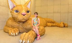 Artista expõe gato de pelúcia de três metros e ninho de joão-de-barro gigante