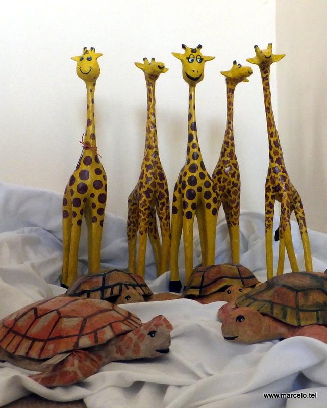 girafas e tartarugas prontas